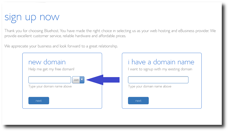 Bluehost domain name page